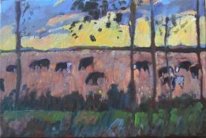 koeien tegen zonsondergang, hornhuizen krt
