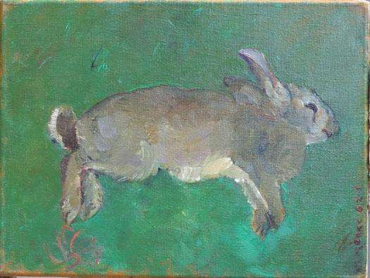 dood konijn